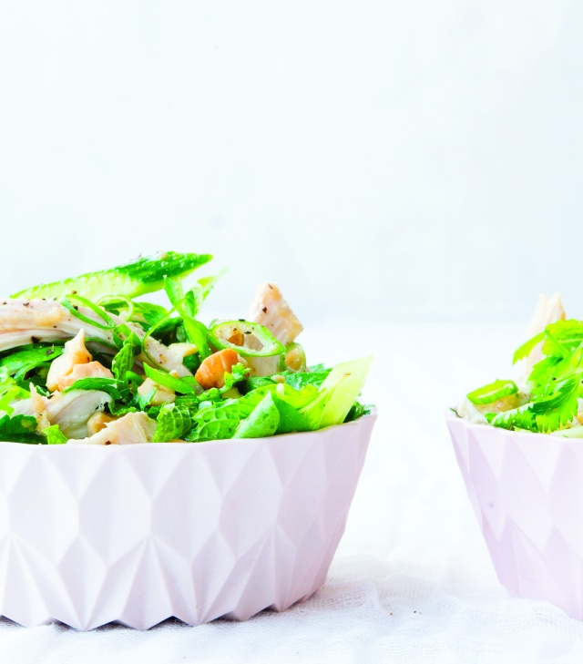 ginger-scallion chicken salad with cucumbers